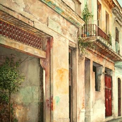 5-516-Havana-24_-x-36_-varnished-watercolour