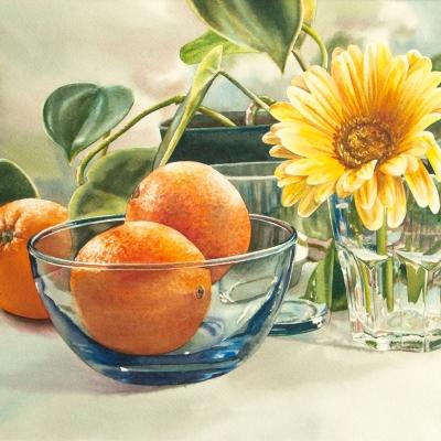 15-Gerbera-Oranges-10_-x-14_-watercolour