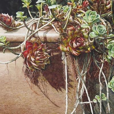 23-Succulent-Garden-16_-x-25_-watercolour