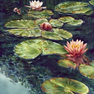 37-Lily-Pond-19.522-x-2722-watercolour